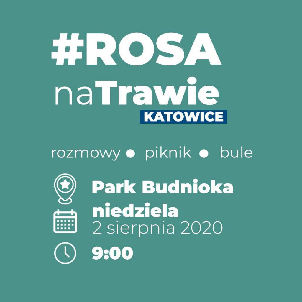 Rosa Na Trawie w Parku Budnioka | Katowice | Monika Rosa