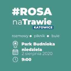 Rosa Na Trawie w Parku Budnioka