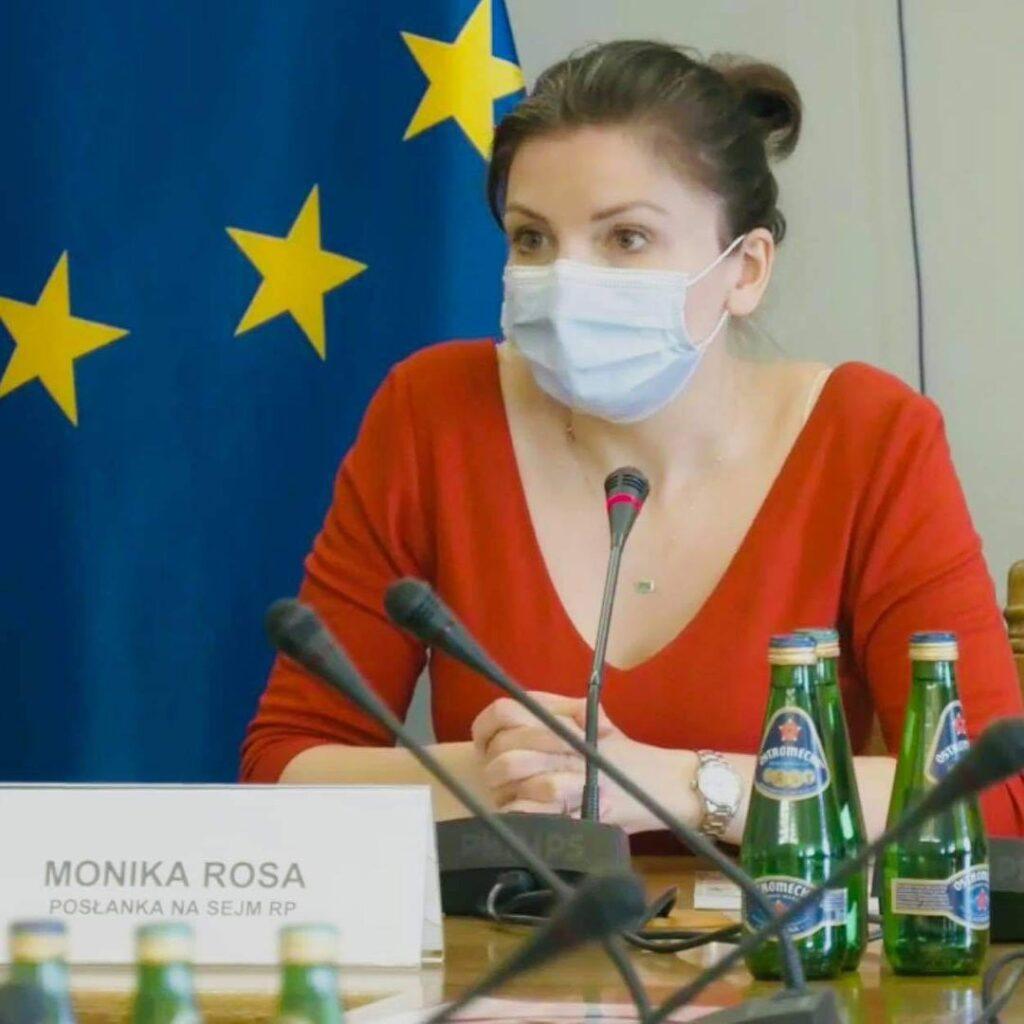 Monika Rosa - Wysłuchanie publiczne ws. Konwencji Antyprzemocowej i groźby jej wypowiedzenia